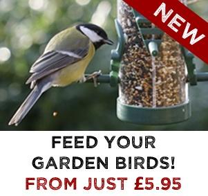 NEW Bird Food & Feeders