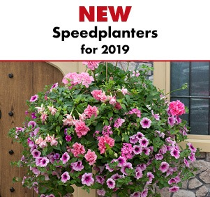 NEW Speedplanters
