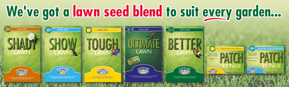 We've got a lawn seed blend to suit