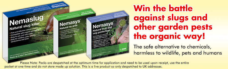 Win The Battle Against Slugs