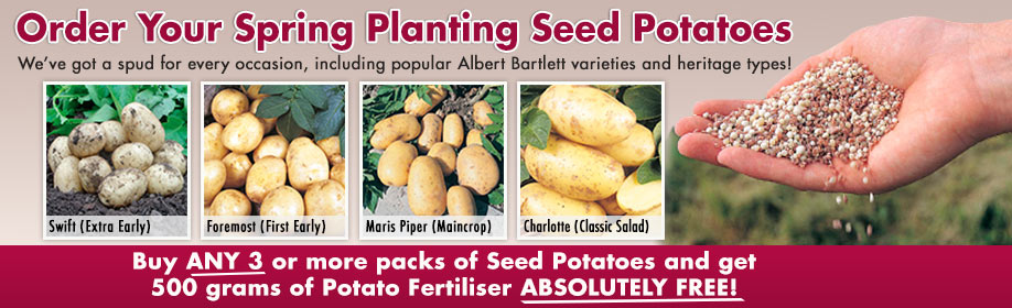 Buy ANY 3 or more packs of seed potatoes and order 500 grm of potato fertiliser for FREE!