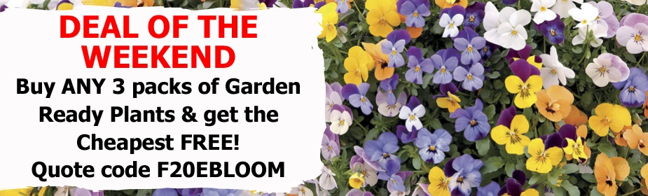3 for 2 on Garden Ready Plants