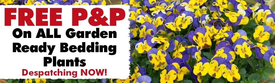 FREE P&P on Garden Ready Plants