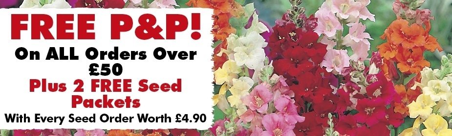 FREE P&P On All Orders Over £50