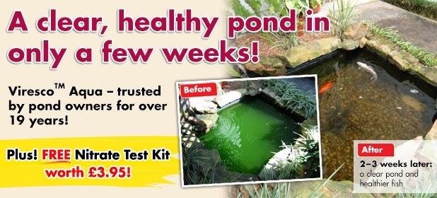 Banish green pond water with Viresco Aqua