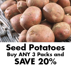 Seed Potatoes, SAVE up to 20%