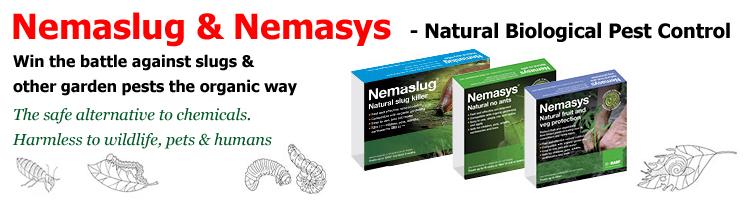 Nemaslug and Nemasys Nematodes