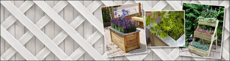 Planters & Basket