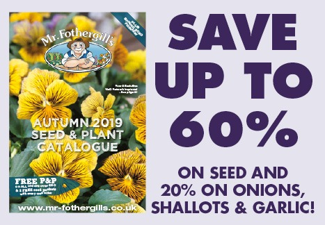 Save up to 60% on seed and 20% on onions, shallots and garlic