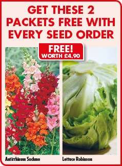 FREE Seed worth £4.90