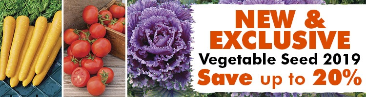 New and Exclusive Vegetable Seeds